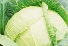 Квашеная капуста без соли диетическая