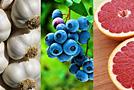 Природное лекарство: полезные свойства растений