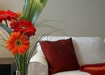 Фен-шуй и цветы