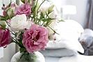 Как сохранить красоту срезанных цветов?