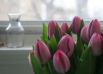 Весна в доме
