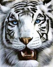 Гороскоп на год тигра 2010 по знакам зодиака