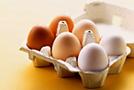 Яйца на завтрак помогут снизить потребление калорий в течение дня