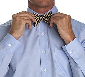 Галстук-бабочка (Bow Tie)