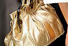 Модные сумки Весна-Лето 2009